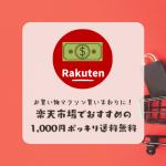 楽天市場1000円ポッキリ送料無料おすすめまとめ